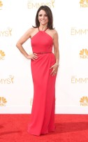 rs_634x1024-140825161134-634.julia-louis-dreyfus-emmy-awards-red-carpet-082514