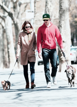 Leighton Meester and Adam Brody walked Trudy and Penny Lane in a Manhattan park.